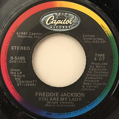FREDDIE JACKSON:YOU ARE MY LADY(LABEL SIDE-A)