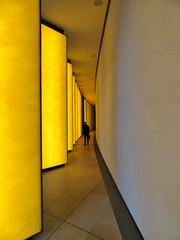 Lower Level, Louis Vuitton Foundation, Paris, France`