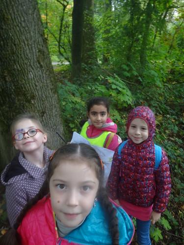 L2 naar het bos