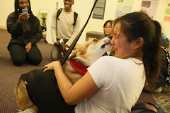 Doggie kisses relieve stress for W&M students!