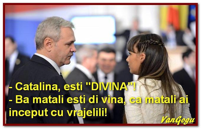 Puscariasul Liviu Dragnea