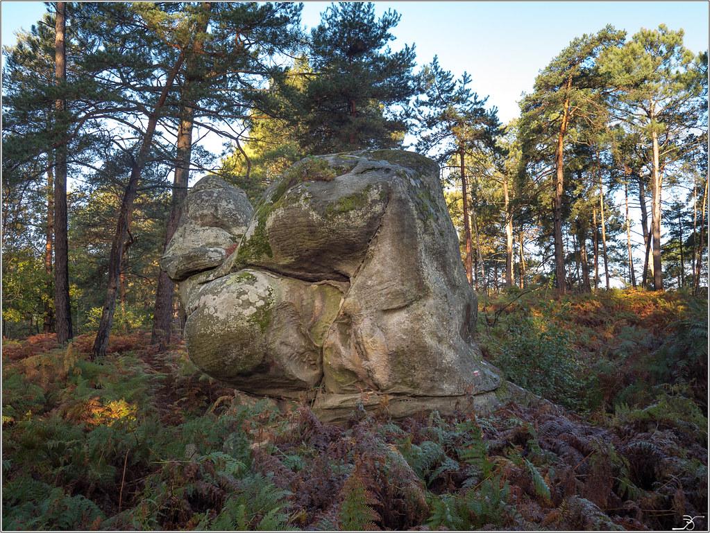 Les rochers de Nemours 36855362184_68d227b6bf_b