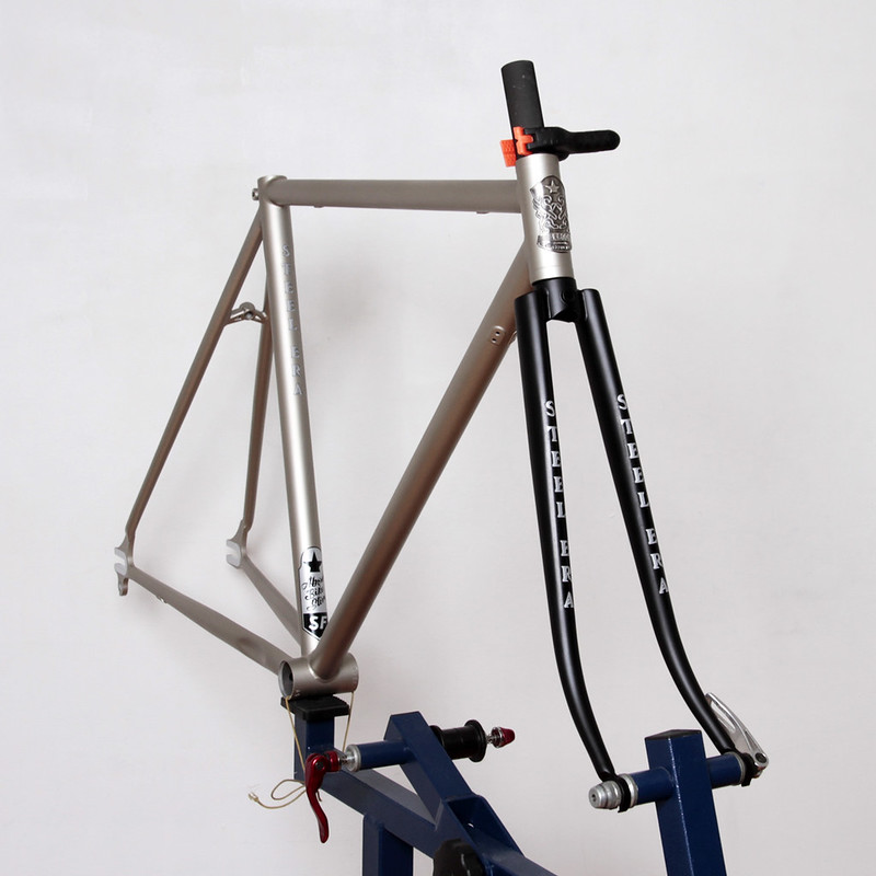 Steel Era Frame Set Painted by Swamp Things.