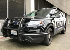 King County Sheriff/Sound Transit Police E16776