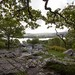 Jenkin Crag, Skelghyll Wood, Ambleside  3
