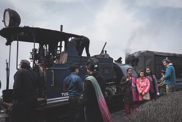 Darjeerling - Toy Train-6