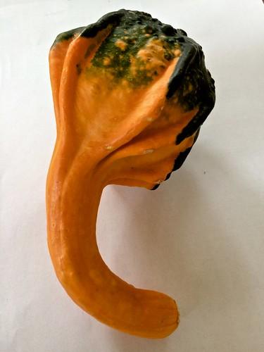 gourd #2