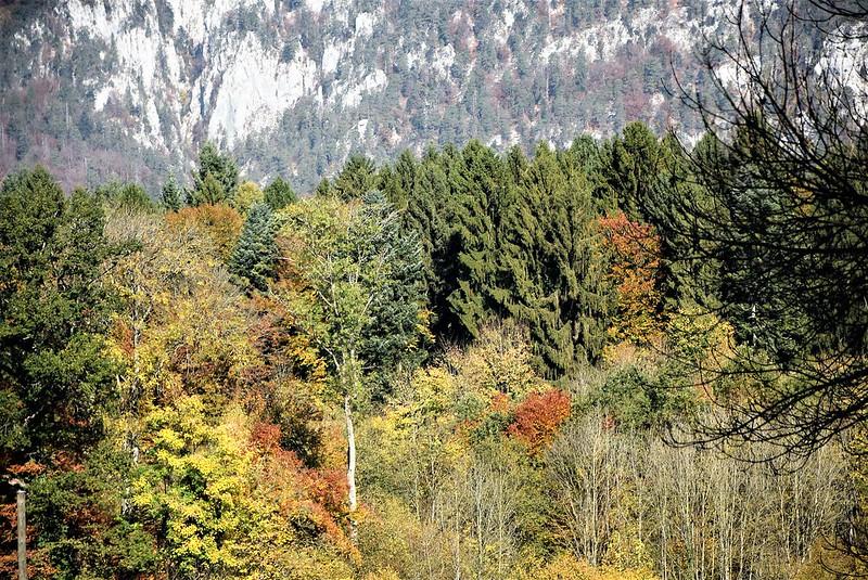 Autumn 18.20 (3)