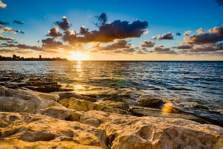 The Coast in Sour (Tyre)