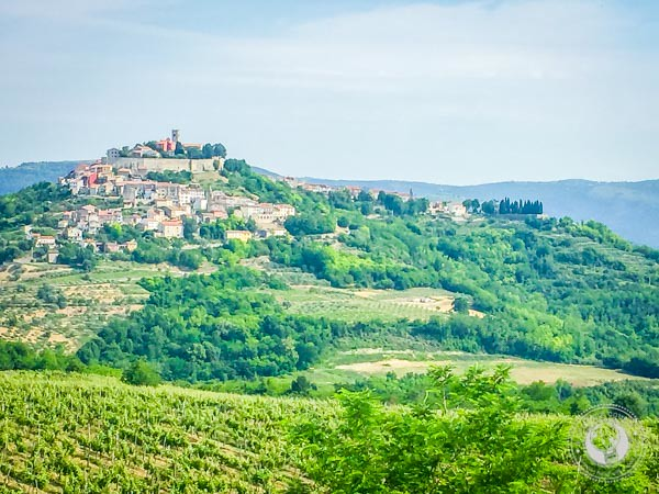 Beautiful Motovun In Istria Croatia