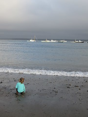 Lu On The Beach In Lincolnville