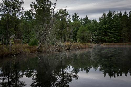 Oxbo Pond