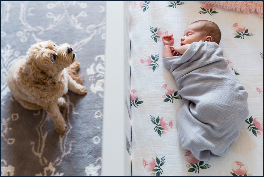 olivia-newborn-90