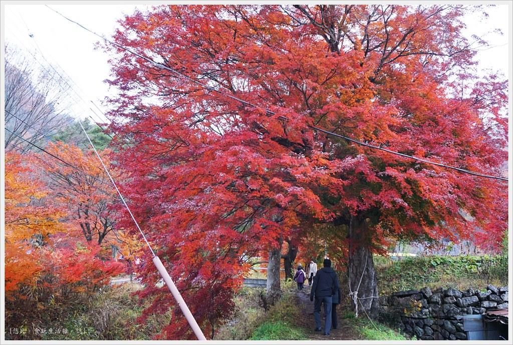 紅葉迴廊-久保田一竹美術館-1
