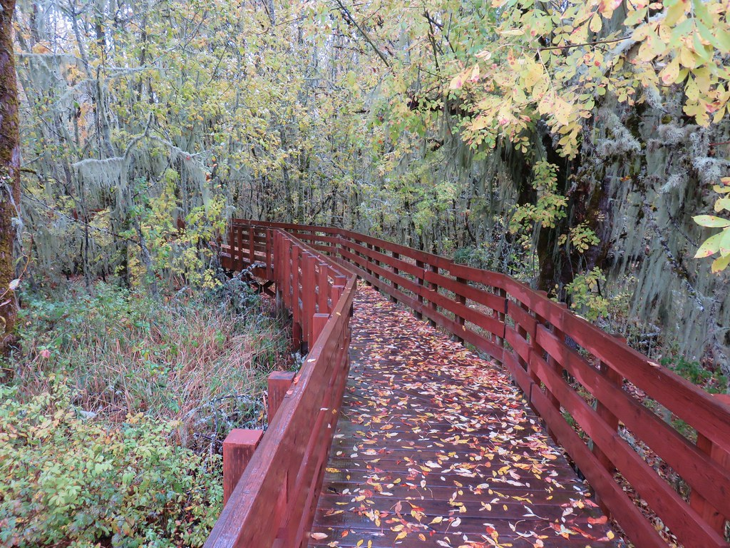 Homer Campbell Boardwalk
