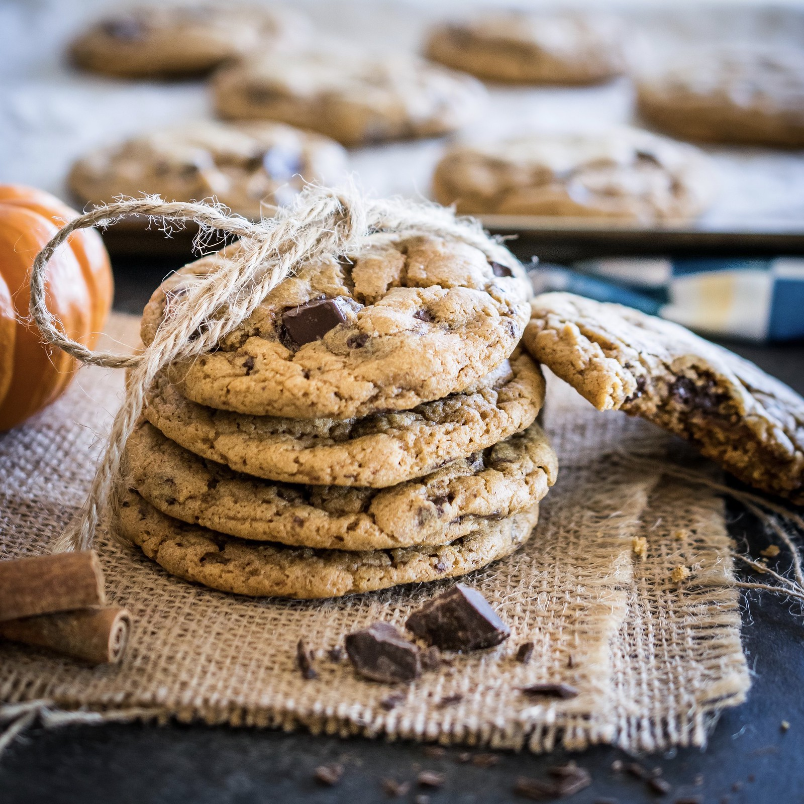 pumpkin chocoloate chip cookies