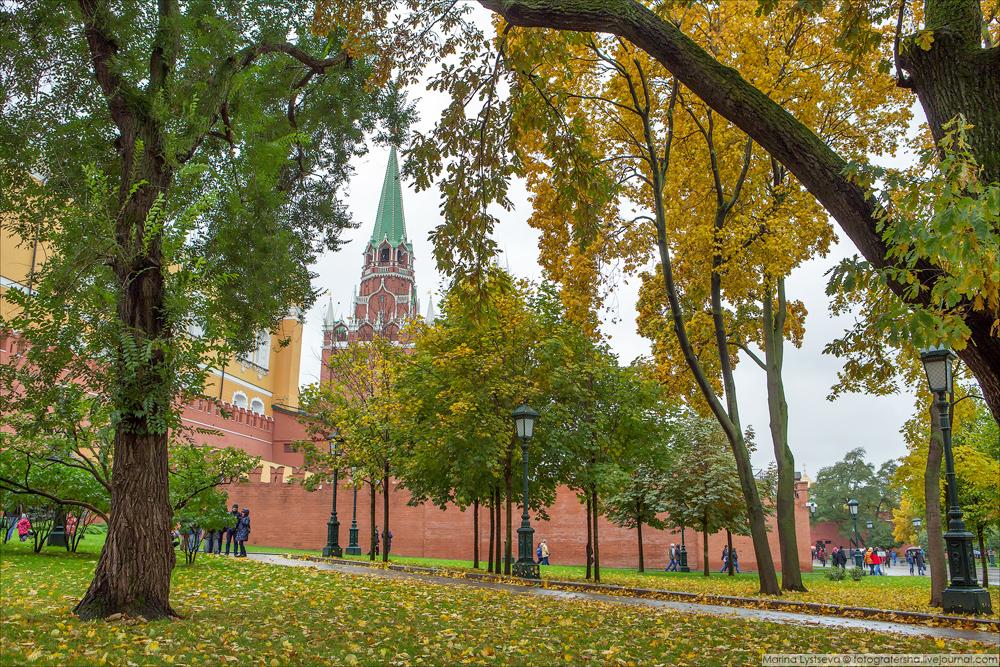Почему в москве сегодня много полиции 157