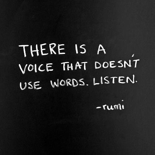 Wisdom Quotes : …