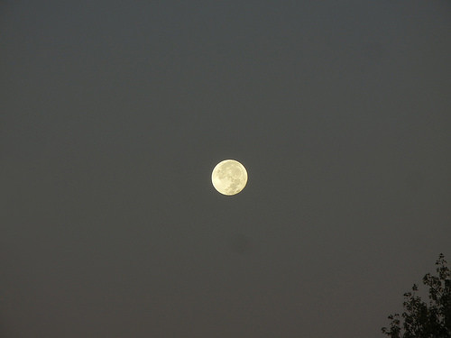 DSCN1023 - Full Moon, October 2017 _ m
