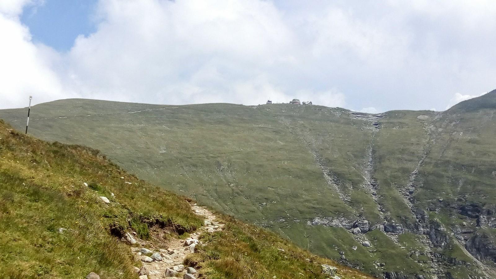 Varful Omu vazut de pe Valea Gaura.