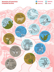 Mountains of Central Asia: ecosystem services