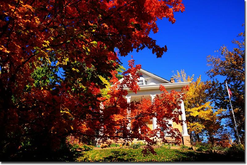 2017 Maple in Fall, Boulder, Colorado  (33)
