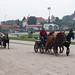 Kasaške dirke v Komendi 24.09.2017 Kmečke vprege