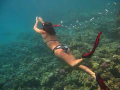 Snorkeling in Bella-sina.com