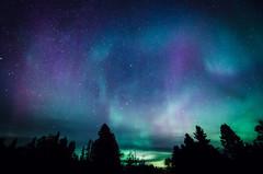 Aurora at Tofte