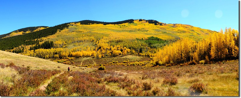 Fall colors, Kenosha Pass  (47)