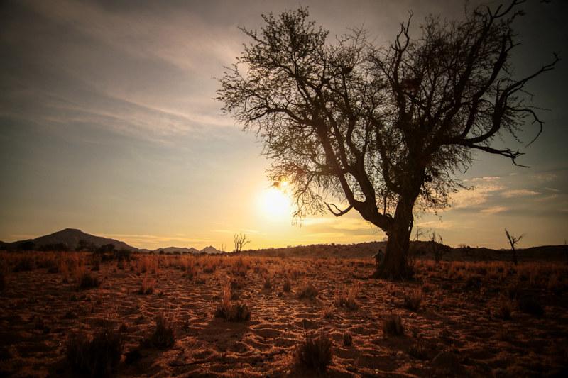 Namibia-Landschaftsfotografie-Farm-Outback