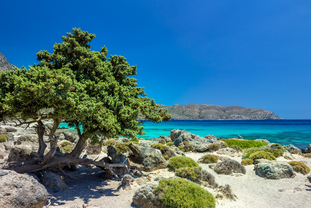 Kedrodasos Beach - Crete, Greece