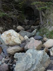 Acadia National Park Day 2