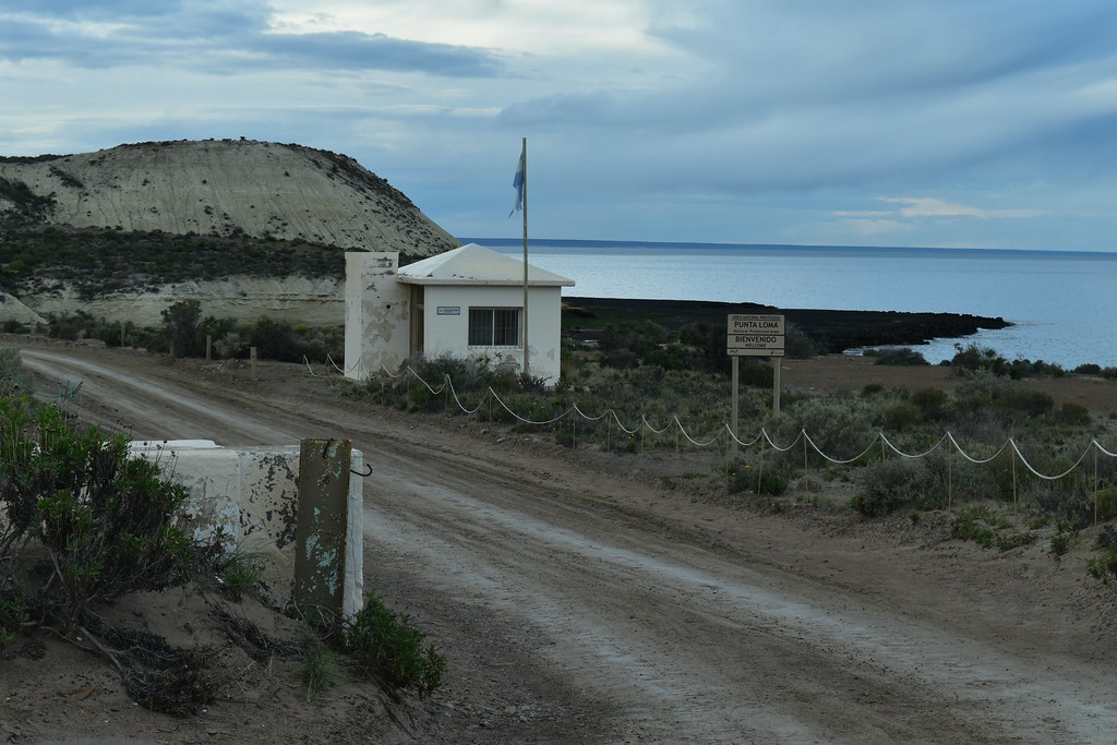 Día 3 - Puerto Madryn