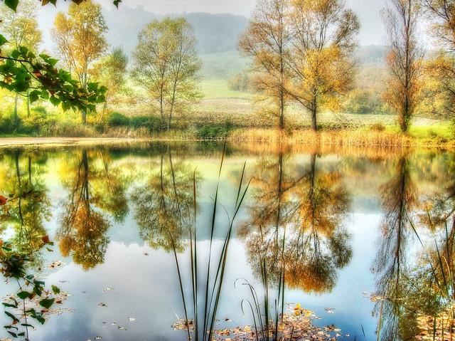 *  Il laghetto del mistero  *  The mystery lake  *  (in explore)