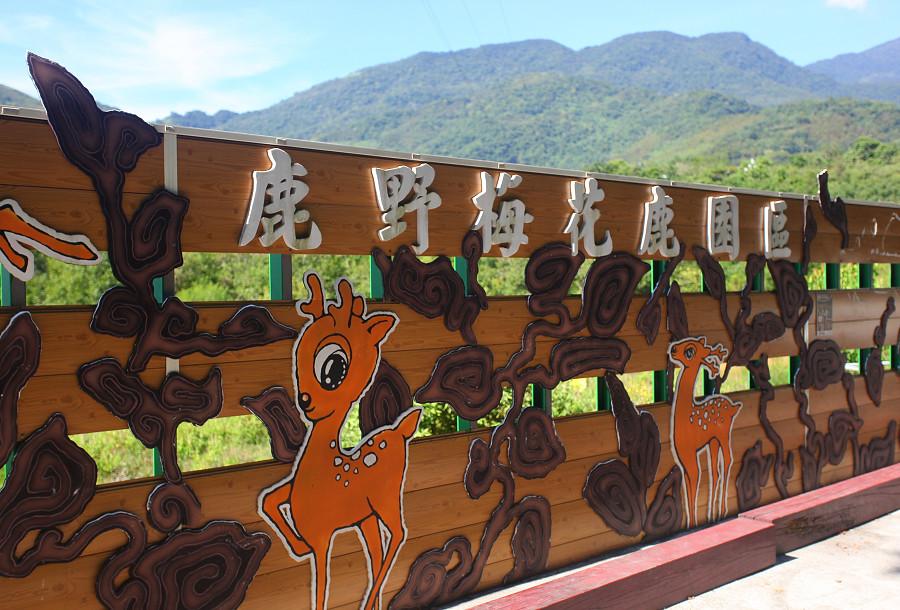 台東景點鹿野武陵綠色隧道B12