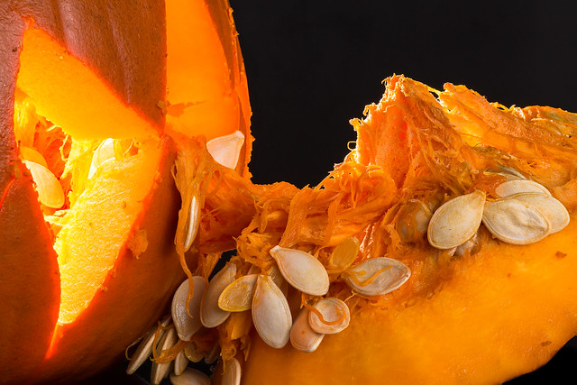 Macro Mondays - Halloween, Canon EOS 5D MARK III, Sigma 105mm f/2.8 EX DG OS HSM Macro