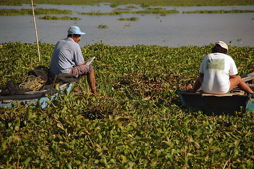 Two men chatting while sitting on boats on the water hyacinth-choked waters of Lake Chapala in Mexico