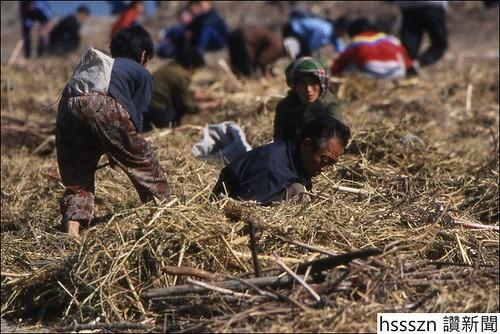 _46381194_northkorea-jangangprovince-peoplelookingforfoods-photopiergiorgiopescali(3)_766_511