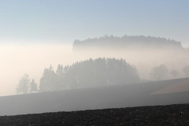 Witthoh im Nebel