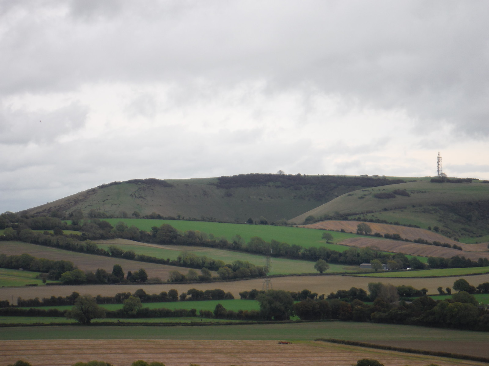 Butser Hill, from Small Down SWC Walk 183 - South Downs Way Section 2: West Meon to Petersfield (East Meon Lunch Pubs Diversion)