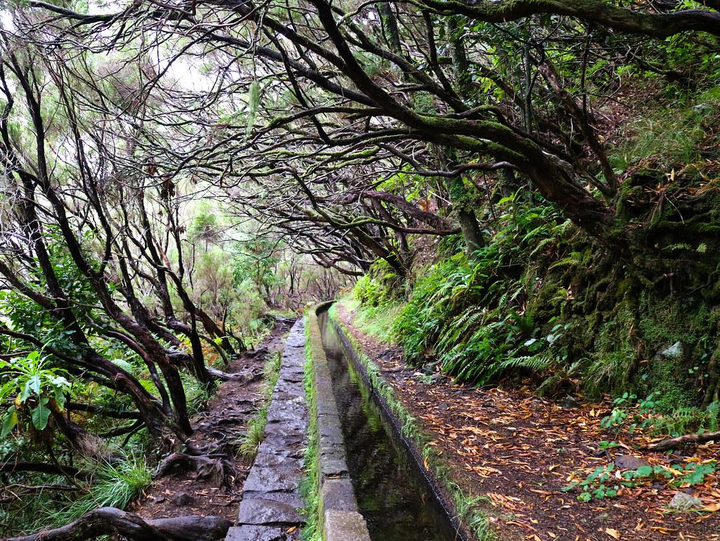 Levadas de 25 Fontes en Madeira