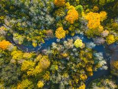 Dūkšta | Lithuania Aerial