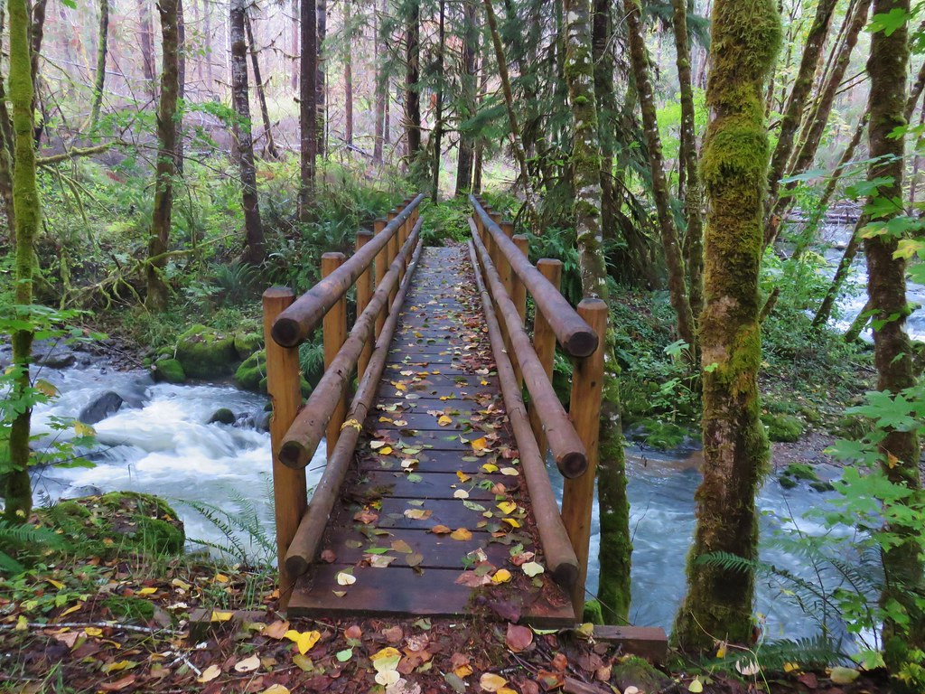 Footbridge along the Deception Butte Trail