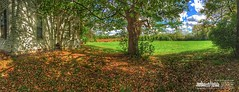 Fall arrives at Braun Farm