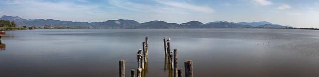 Puccini's Lake II