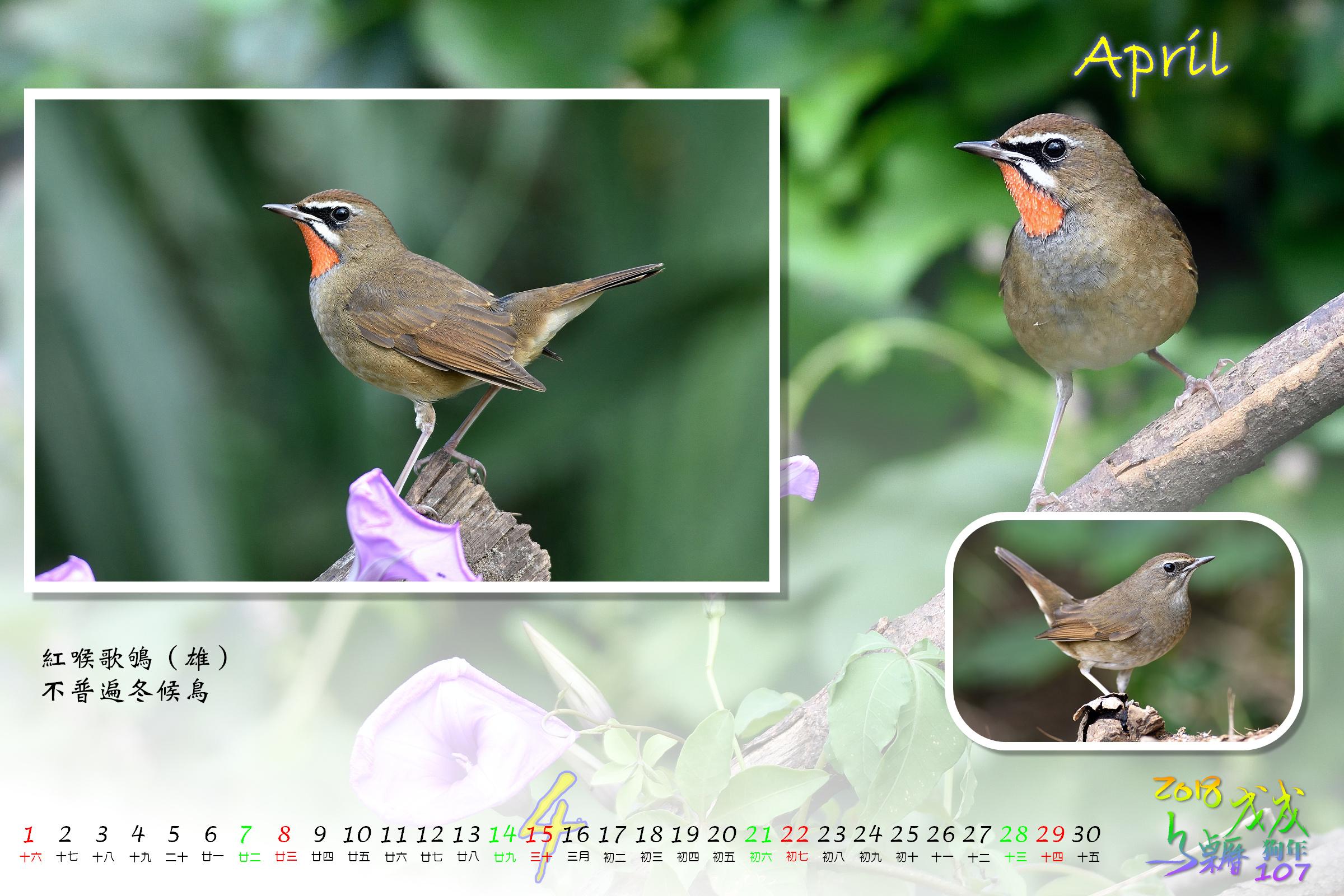 Calendar2018_Alder2_04