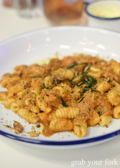 Gnocchetti with braised lamb at Mr Liquor's Dirty Italian Disco by Pinbone at the Tennyson Hotel Bottle Shop in Mascot