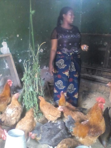 Rhoda Mwile as she explains how she manages the chickens (photo credit: ILRI)