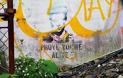 Prove You're Alive